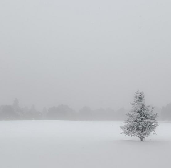 Այս տարվա առաջին ձյունը (լուսանկար)․ Սևանում ձյուն է գալիս