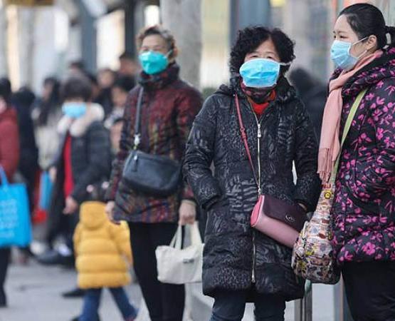 Жителям Китая разрешили есть лягушек, несмотря на коронавирус