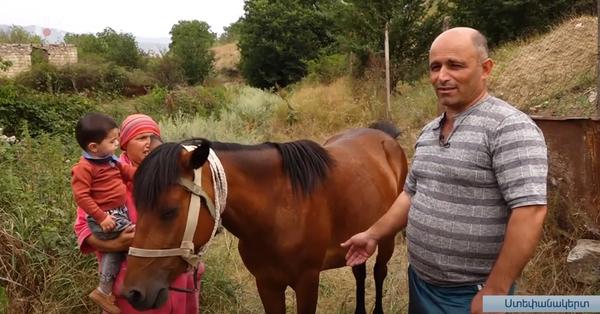 Քարին տակի գրավումից ամիսներ անց ձին եկել, գտել է տիրոջը․ Հուզիչ տեսանյութ
