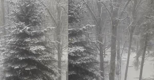 Տեսեք ինչ ձյուն է տեղում Աղվերանում․ Տեսանյութ
