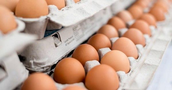 Հայաստանում հավերի 50 տոկոսը սատկել են․ Ձվի շուկայում սարսափելի իրավիճակ է
